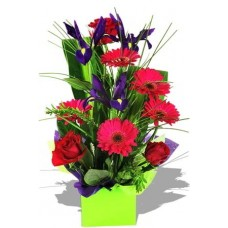 Assorted Arrangement , Iris, rose and gerbera