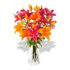 8 Stem Mixed Asiatic Bouquet