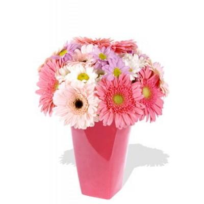 15pcs Mixed Gerbera and Chrysanthemum Vase Bouquet