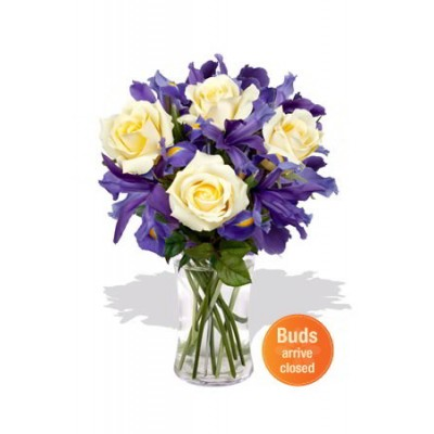 Roses and Iris Vase Bouquet
