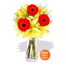 Asiatic and Gerbera Bouquet