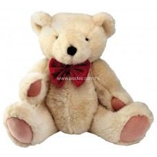 Lovely Teddy Bear 12 Inches Height